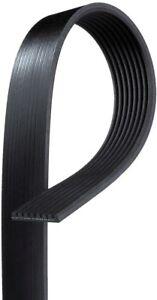 Serpentine Belt  ACDelco Professional  8K590