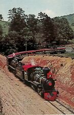 Coming Thru Pass on Tweetsie Railroad in Blowing Rock NC Postcard