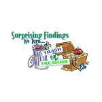 SurprisingFindings