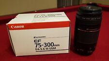 Canon EF 70-300mm f/4-5.6 III USM Lens