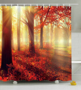Red Autumn Trees Sunlight Fabric SHOWER CURTAIN w/Hooks Forest Path Woods Fall