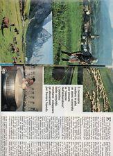 SP59 Clipping-Ritaglio 1977 Carnia Problemi vecchi agricoltura nuova