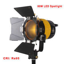High CRI 80W LED Spotlight Portable Continuous Light For Photographic Video Film