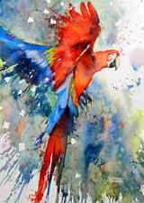 Home art wall decor Colored parrot Birds Abstract painting HD Printed on canvas