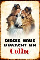 Hund Collie bewacht Haus Blechschild Schild gewölbt Metal Tin Sign 20 x 30 cm