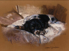 "ENGLISH SPRINGER SPANIEL DOG FINE ART LIMITED EDITION PRINT  ""The Sleepover"""