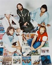 "THE BEACH BOYS Poster Print 24x20"""