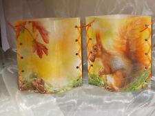 Deko Windlicht Eichhörnchen Nüsse Tischlicht Mitbringsel