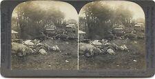 Scène de la Grande Guerre 14-18 WW1 Désastre Stéréo Stereoview