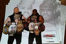 Dudley boys TNA 8x10 Bully Ray bullet club pwg njpw wwe nxt team 3d wrestling