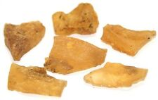Amber Collection Set Gdansk, Poland Rough Raw 6 Pieces 16.3 Grams 28-32mm