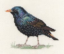 STARLING ~ Garden Bird ~ Full counted cross stitch kit with all materials