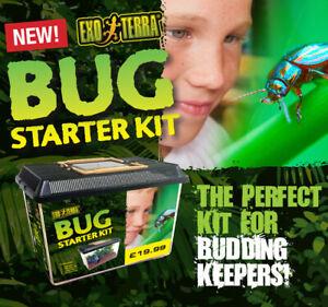 Exo Terra Bug Kits - starter tank, plant, soil, hide for invertebrates & spiders