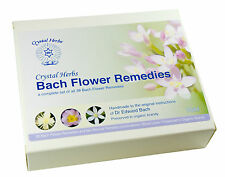 Ensemble de 10ml Bach Fleur Remède en Carte Boîte - sans Alcool Préservant
