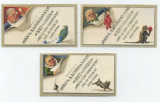 3 diff trade cards - NYC dry good store - Mischievous animals - Kaughran & Co