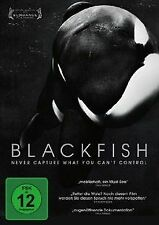 Blackfish - Never capture what you can't control von... | DVD | Zustand sehr gut