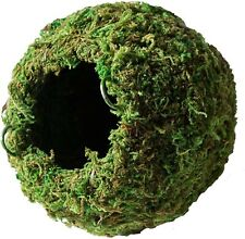 """Galapagos Mossy Hanging Round Cave Hide, 6"""" green sphagnum moss, reptile"""