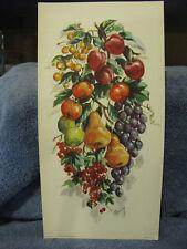 Fruit- Pears, Grapes, Cherrys Litho Print- Craig- USA