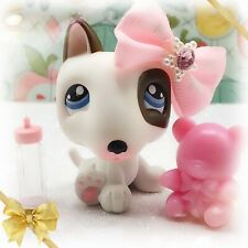Littlest Pet Shop No # Diary Sitting Bull Terrier Puppy Dog White Black Spot LPS