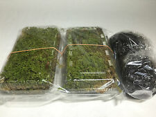 Natural Moss Ball Kokedama Making Kit 2 set Made in japan
