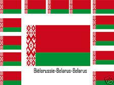 Assortiment lot de 25 autocollants Vinyle stickers drapeau Biélorussie-Belarus