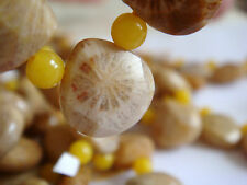 """12x12mm Faceted Teardrop Briolette Shape Petoskey Fossil 8"""" INCH Stones Beads !("""