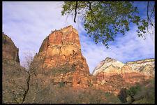 392063 Mount Majestic A4 Photo Print