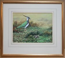 Lapwing & Chick. Original Gouache by listed artist Alan M Hunt, circa 1985