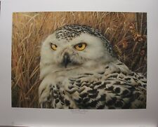 "Denis MAYER Snowy Owl LTD art print Ducks Unlimited "" Optical Surveillance """