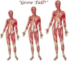 BULK BUY BE TALLER gain between 1-6 inches safely 24 Month Course FREE SHIPPING