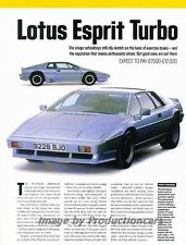 Lotus Esprit Turbo Ferrari 308GT4 AC 3000ME Car Review Report Print Article J840