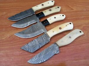 LOT OF 5 Hunting Nest Handmade Damascus steel hunting skinner knife BONE 399