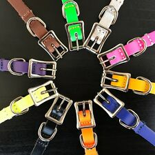 10 Colours of Real Leather Dog Collars, Extra Small for Puppy and Mini Dogs
