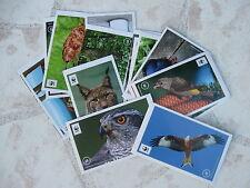 """40 Sticker zum Aussuchen: Edeka/WWF-Sammelaktion-Sticker """" Unser Wald """""""
