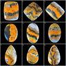 Natural Bumble Bee Jasper Top Quality Beautiful Huge Cabochon Gemstones