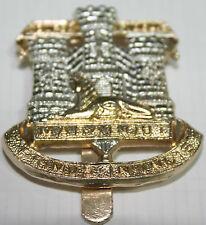Genuine British Army Devonshire and Dorset Regiment Cap Badge Firmin Branded