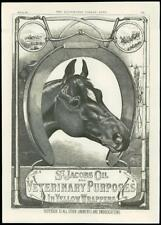 1888 - ADVERTISING ST JACOBS OIL LINIMENT EMBROCATION VETERINARY PURPOSES (141)