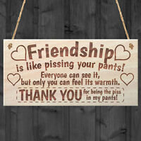Friendship Plaque Sign Best Friend Gift Shabby Chic Wooden Decor Hanging Wood
