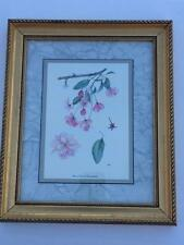 Framed Art Print Cherry Blossom Botanical Flower Picture Windsor Art Products