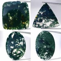 Natural Moss Agate Oval Pear Cushion Cabochon Loose Gemstone Collection