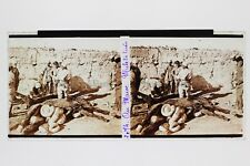 Morocco France Mules killed Large Animal Anatomy Guerre WW1 Photo Plate Stereo