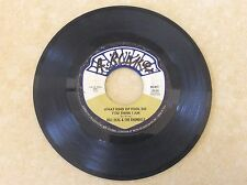 BILL DEAL & THE RHONDELS - WHAT KIND OF FOOL DO YOU THINK I AM ? - HERITAGE - VG