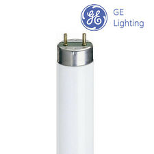 1.2m M F36W (36w) T8 tubo fluorescente 865 [6500k] luz natural (GE Lighting)