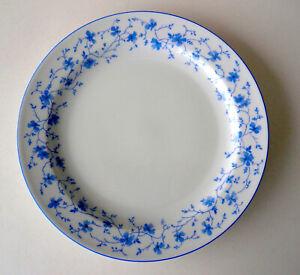 ARZBERG Teller ∅ 25 cm Form 1382 Blaublüten Speiseteller flach Porzellan