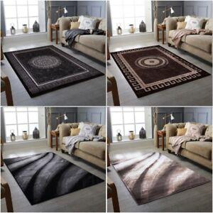Extra Large Modern  Living Room Rugs Area Carpet Rug Hallway Runner Bedroom Rug