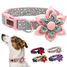 Fancy Nylon Pet Dog Collar Flower Design Adjustable for Small Large Female Dogs