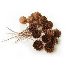 Small Natural Real Pine Cones - Pack of 20