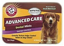 Arm & Hammer Dental Mints For Dogs. Beef Flav. Premium Service, Fast Dispatch.