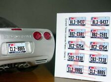 TEXAS LONE STAR-STYLE miniature LICENSE PLATES for 1/25 scale MODEL CARS - COOL!