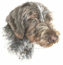 GERMAN WIRE HAIRED POINTER.       3 Blank Dog greeting cards by Christine Groves